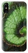 Begonia Leaf 2 IPhone Case