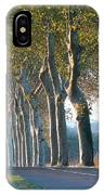 Beloved Plane Trees IPhone Case