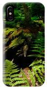 Beneath The Trees - Blue Ridge Mountains IPhone Case