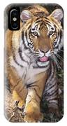 Bengal Tiger By Tree Endangered Species Wildlife Rescue IPhone Case