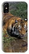 Bengal Tiger Drinking At Pond Endangered Species Wildlife Rescue IPhone Case