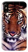 Bengal Tiger Eye To Eye IPhone Case