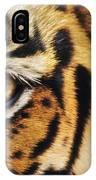 Bengal Tiger Face IPhone Case