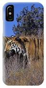 Bengal Tigers On A Grassy Hillside Endangered Species Wildlife Rescue IPhone Case