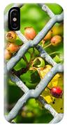 Berries And The City - Featured 3 IPhone Case