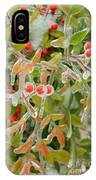 Winter Berries On Ice IPhone Case
