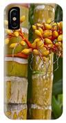 Berries On Bamboo Hawaii IPhone Case