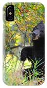 Berry Picking IPhone Case