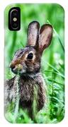 Better Get Started On Those Easter Eggs IPhone Case