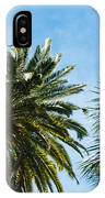 Beverly Palms IPhone Case