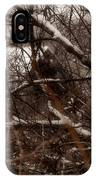 Beyond The Thicket - Abandoned IPhone Case