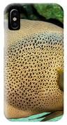 Big Beautiful Fish IPhone Case