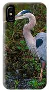 Big Blue And The Ibis IPhone Case