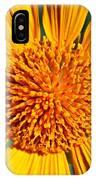 Big Bright Bold IPhone Case