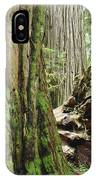 Big California Redwood Tree Forest Art Prints IPhone Case