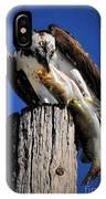Big Fish IPhone X Case