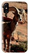 Big Horn Ram At Zion IPhone Case
