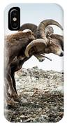 Big Horn Sheep Butting Heads IPhone Case