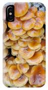 Big Mushrooms Family IPhone Case