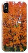 Big Tree In Autumn IPhone Case