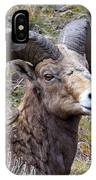 Bighorn Battle Scars IPhone Case