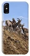 Bighorn Sheep At Blue Mesa Reservoir IPhone Case