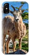 Bighorn Sheep Of Lake Minnewanka IPhone Case