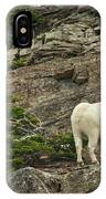 Billy Goat 4 IPhone Case