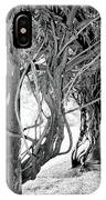 Biltmore Arbor Asheville Nc IPhone Case