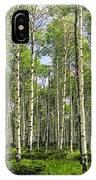 Birch Tree Grove In Summer IPhone Case