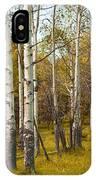 Birch Tree Grove No. 0126 IPhone Case