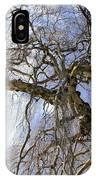 Birch Tree  IPhone Case