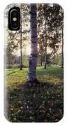 Birch Trees, Imatra, Finland IPhone Case