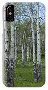 Birch Trees In A Grove No. 0148 IPhone Case