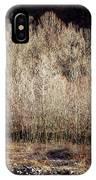 Birches In Winter IPhone Case