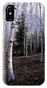 Birches IPhone Case