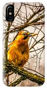 Bird Holding Food In Mouth IPhone Case