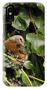 Bird In The Ivy IPhone X Case