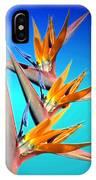Bird Of Paradise 2013 IPhone Case