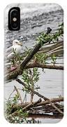 Bird On A Weir IPhone Case