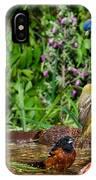 Birds Bathing IPhone Case