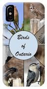 Birds Of Ontario IPhone Case