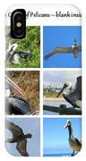 Birds - Pelicans - Boxed Cards IPhone Case