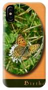 Birthday Greeting Card - American Copper Butterfly IPhone Case