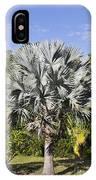 Bismarck Palm  Bismarckia Nobilis IPhone Case
