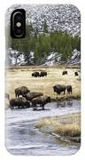 Bison By The Madison IPhone Case