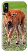 Bison Calf In The Flowers Yellowstone National Park IPhone Case