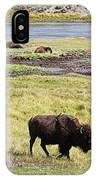 Bison Mother And Calf In Yellowstone National Park IPhone Case