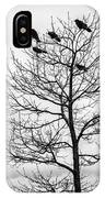 Black And White Blackbirds  IPhone Case
