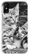 Black And White Kittens IPhone Case
